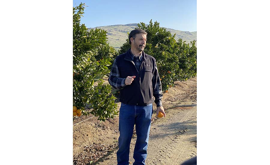 Mark-Gillette-Citrus-Groves.jpg