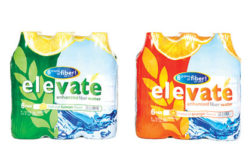 Elevate 6 Lemon & Orange