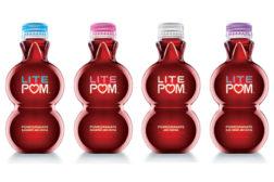 Lite Pom group