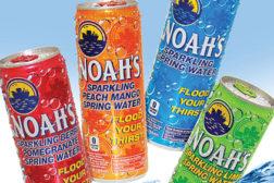 Noah's cans