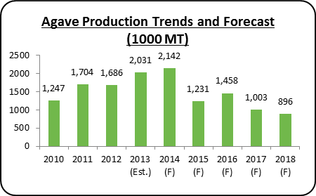 Agave production forecast