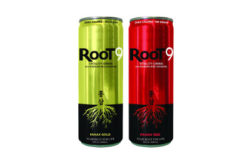 Root9_422