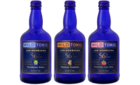 Wild Tonic Jun Kombucha Ale
