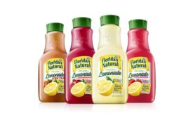 Florida's Natural Lemonade
