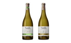 Notable Chardonnays