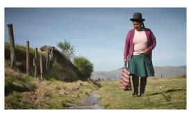 Stella Artois documentary