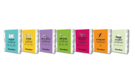 teasane wellness teas