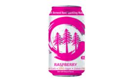 Craft Clarity Raspberry