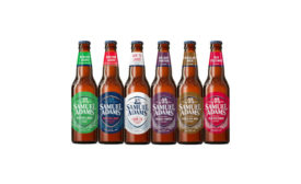 Samuel Adams Winter Variety Pack