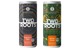 Two Roots Mango/Grapefruit