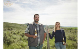 Michelob Ultra Contract for Change