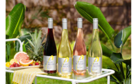 Cupcake Lighthearted Wines