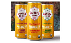 Wonder Drink Prebiotic Plus