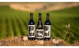 Cataclysm Wines