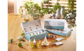 Tea Forte Wellbeing Collection