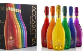 Accademia Rainbow