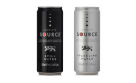 Llanyllr Source Sparkling Water in Cans