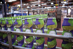 Stack Wines enlists automated multipack shrink labeler