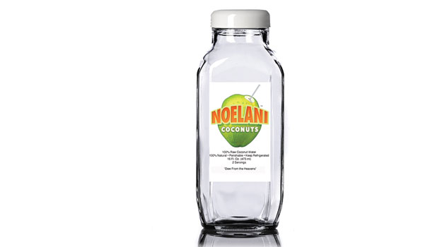 Noelani coconut water co.