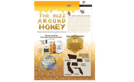 Honey Infographic