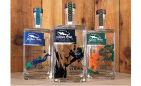 Dogfish Head bottles