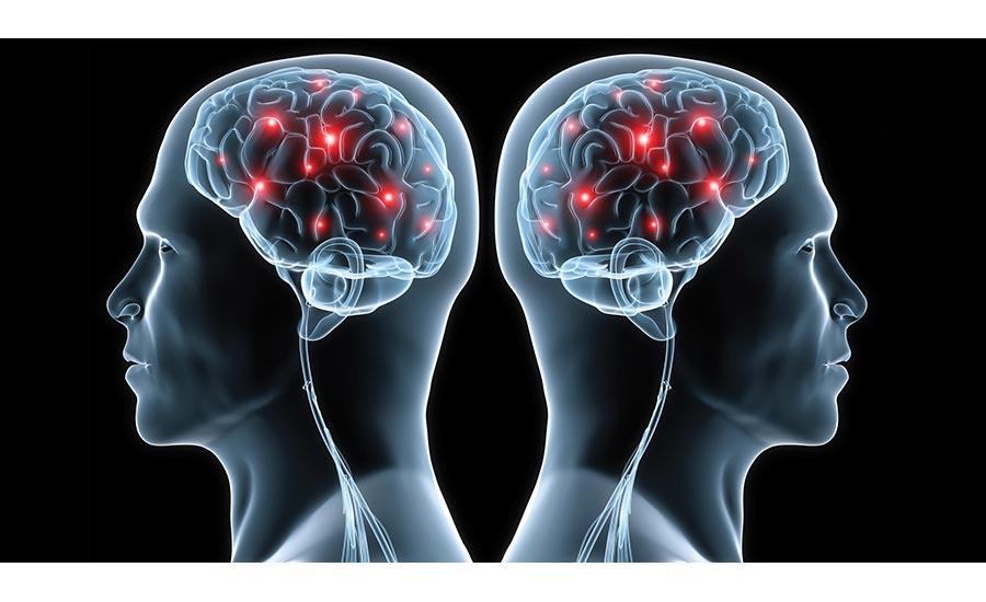 cognizin research paper