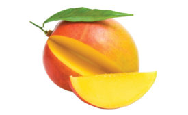 Domestic and Exotic Fruits - Mango - Beverage Industry