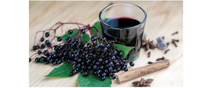 Elderberry-Beverage.jpg
