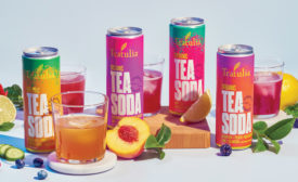 Teatulia's Organic Tea Sodas - Beverage Industry