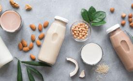 plant-based ingredients